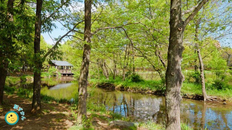 徳生公園の池と東屋