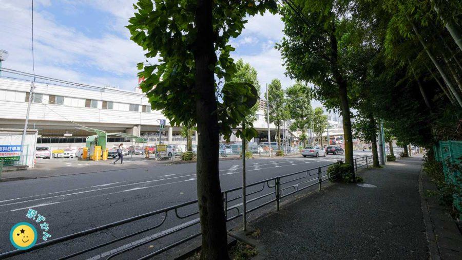 あざみ野駅西口の街路樹