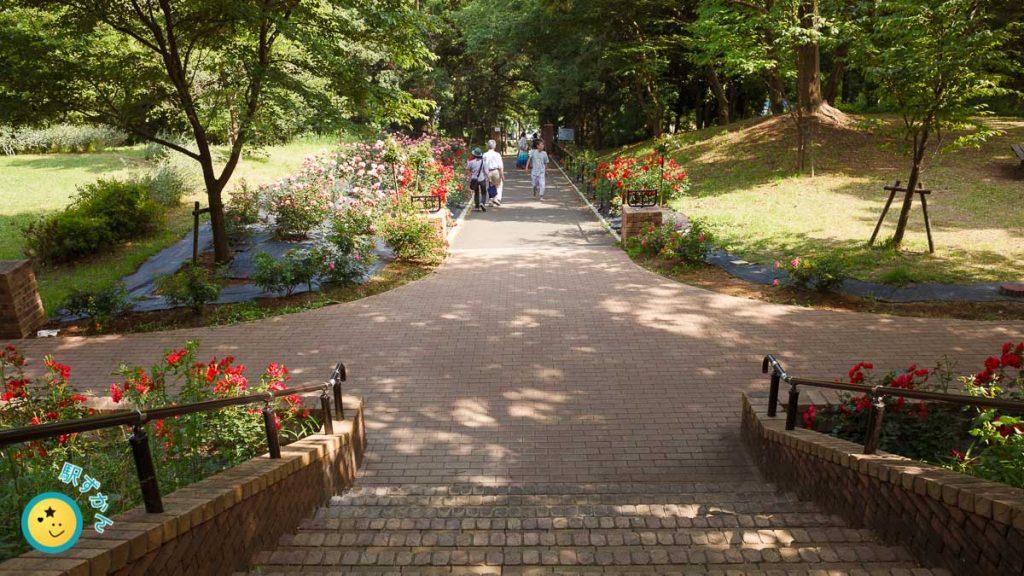 生田緑地ばら苑 東口側の裏門